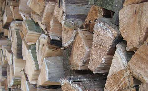 Best Firewood to Burn – All About Firewood