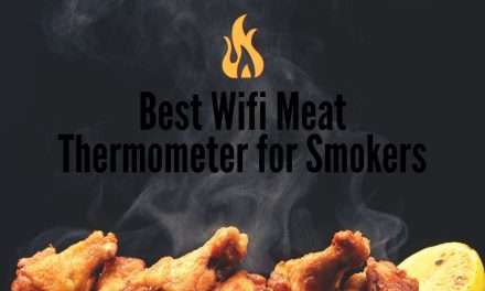 Best Wifi Meat Thermometer for Smoker